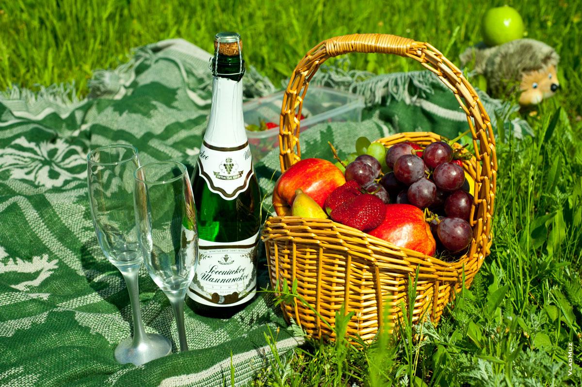 Зайка открытки, открытки с шампанским и фруктами