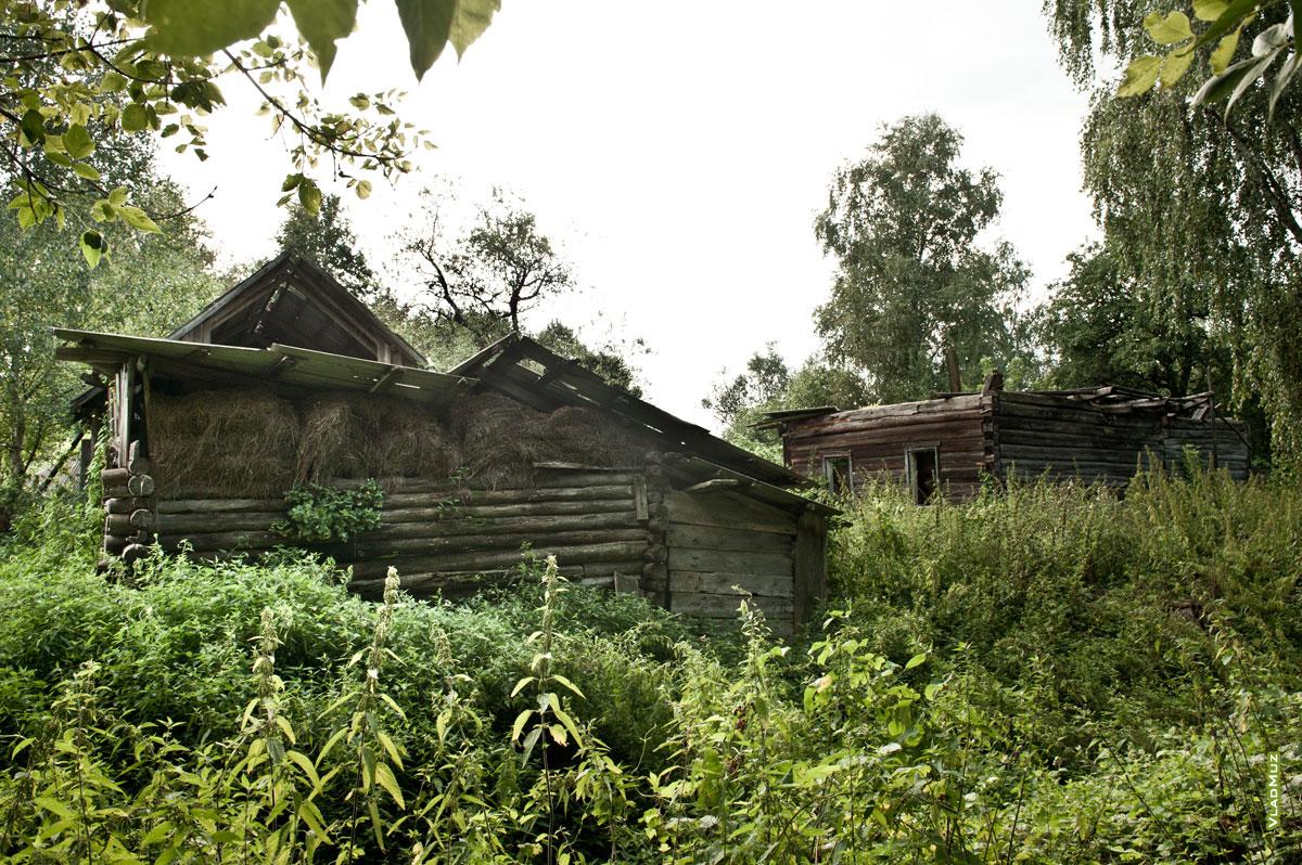 Фото разрушенных домов в деревне