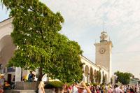 Фото густой кроны декоративной катальпы и вокзальной башни Симферополя