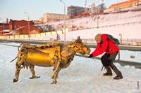 Я покормил кормилицу, чтобы сделать свое фото с металлической коровой в Ижевске