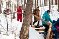 К ручью и родникам в «Лудорвае» сверху вниз ведут деревянные лестницы