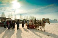 Сани для катания на лошадях в «Лудорвае» ждут всех желающих