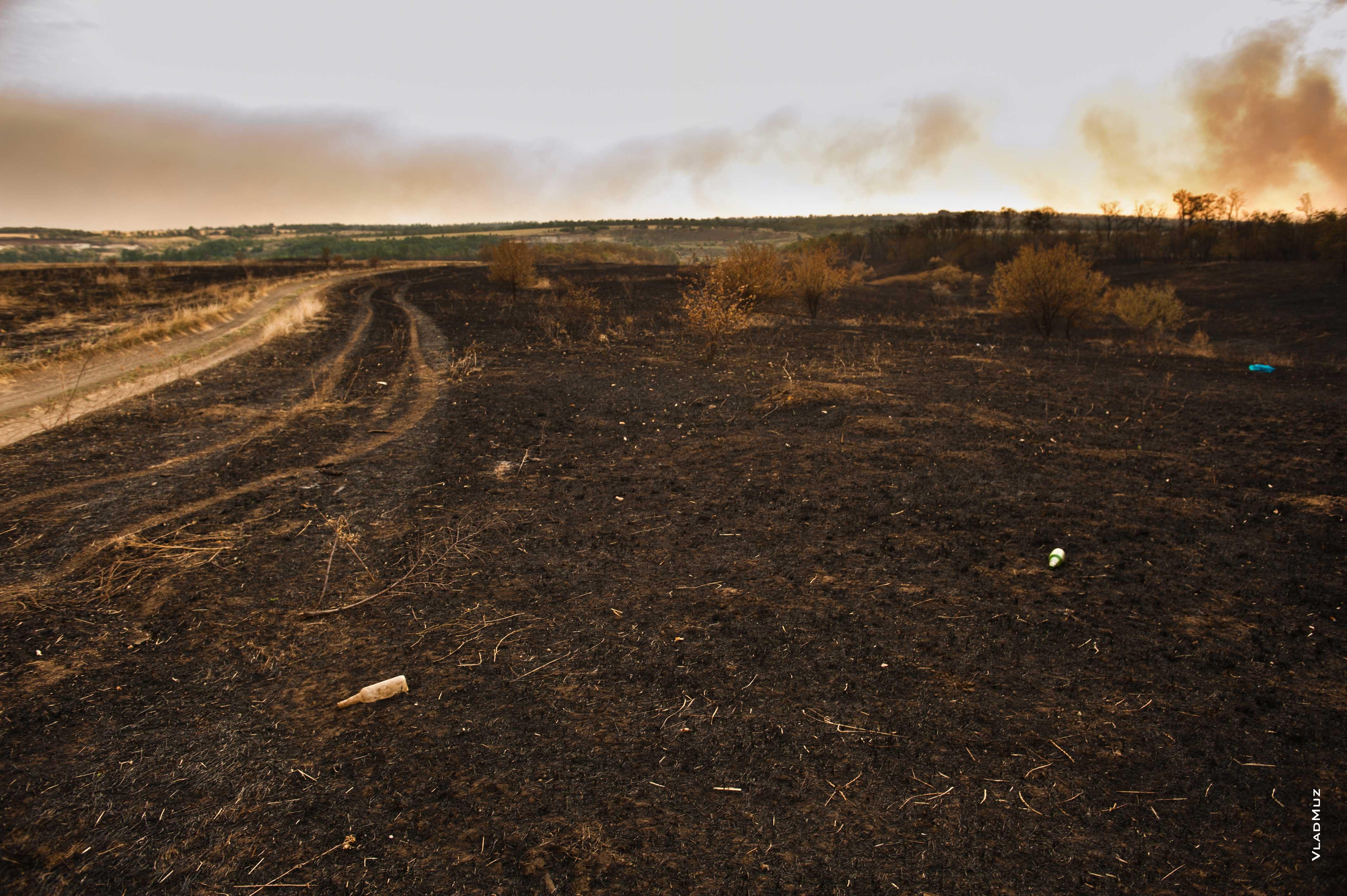 картинки пустых земель признался одном интервью