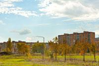 Вид на жилые районы Волгодонска с территории парка культуры и отдыха «Молодежный»