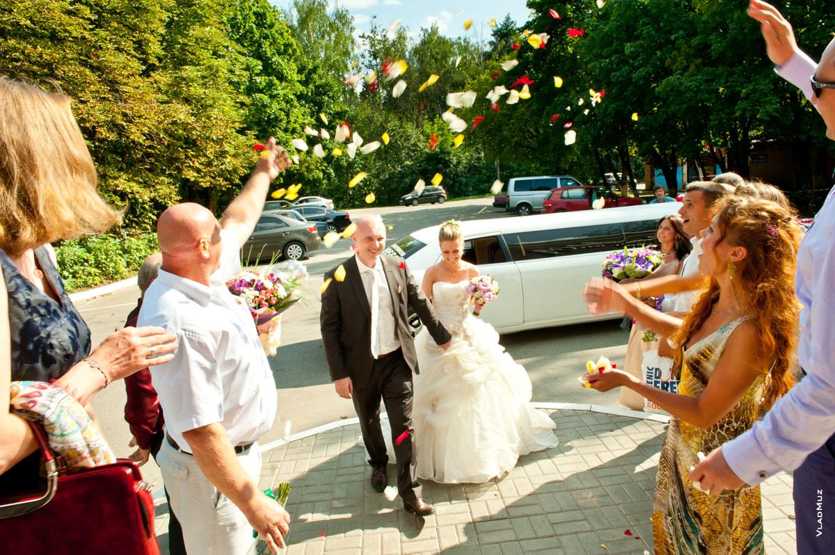 Sunset motu wedding
