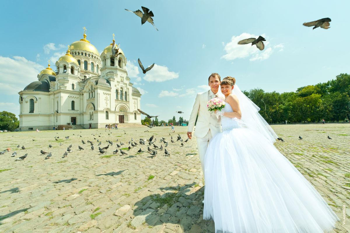 Фотографии владимира музыченко