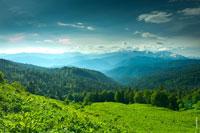 Этот горный фото пейзаж можно увидеть, если пройти лес у подножия гор и поле с травой по грудь