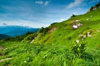 На горных склонах гремят ручьи. Кругом начинают открываться превосходные горные виды