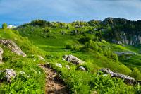 На склонах горы красивых деталей. Солнце добавляет красок в горный пейзаж, играя контрастом света и цвета