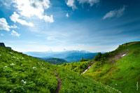 На горных склонах видны настоящие альпийские луга