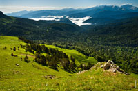 Фото сверху с горы на леса и лесистые горные склоны Лагонаки